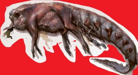 larva astral e encosto mentiras